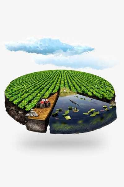 Помощь эколога на предприятии